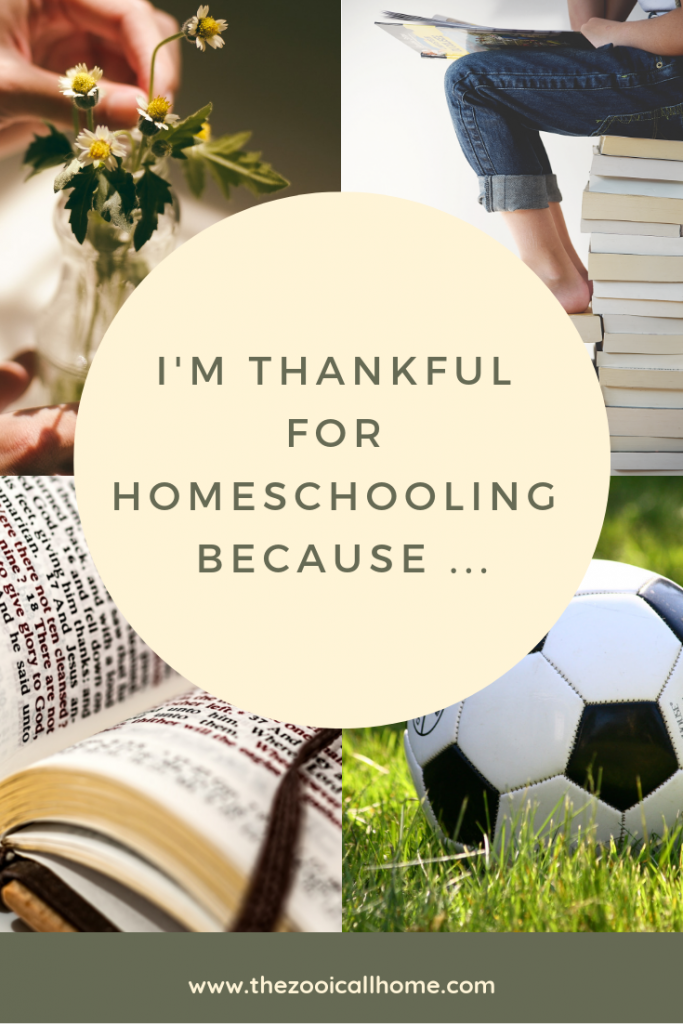 Why I'm thankful for homeschooling.