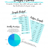 A Young Adult's Budget Planner