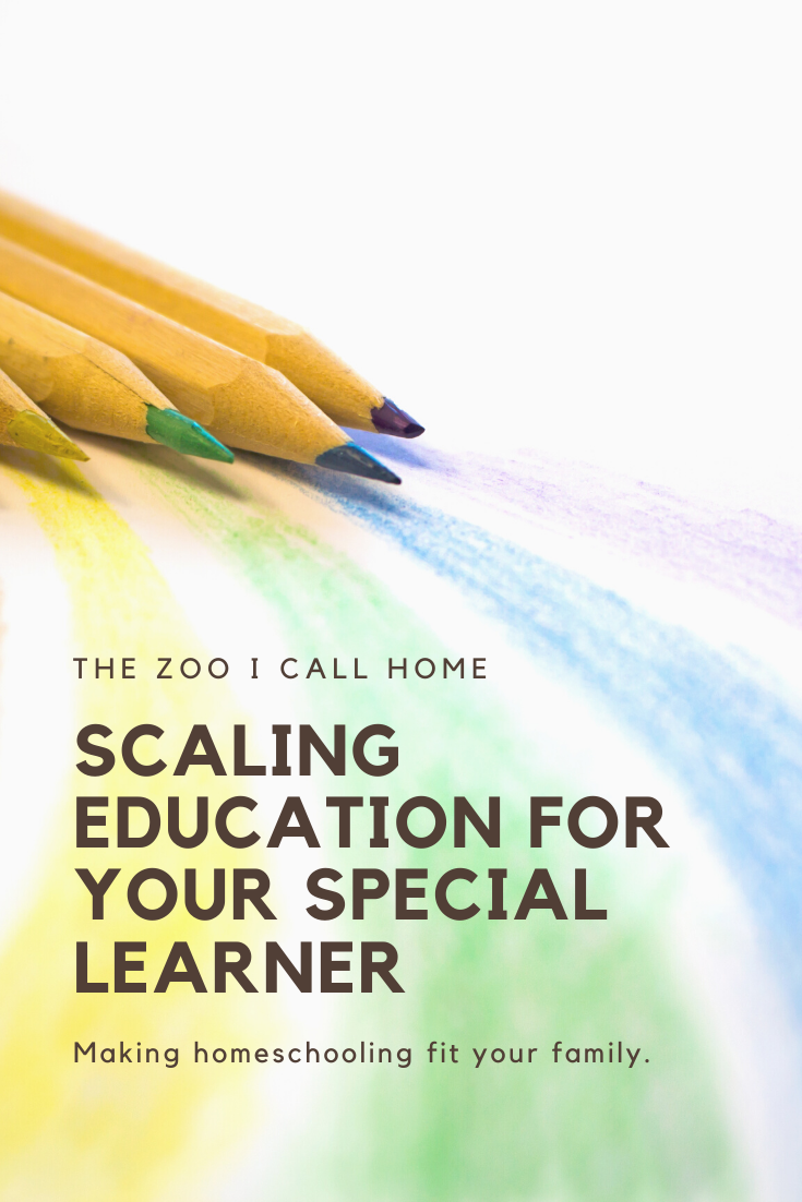 Scaling Education for your special learner. Making homeschool fit your family.